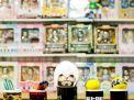 Salon Comic Zaragoza 2012 Album de fotos 14 Diciembre 2