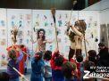 Salon Comic Zaragoza 2015 Album de fotos 20 Diciembre 31